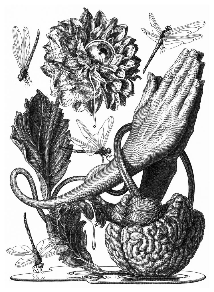 05-Prayer-Olivia-Knapp-Cross-Hatch-Drawings-with-a-bit-of-Anatomy-www-designstack-co