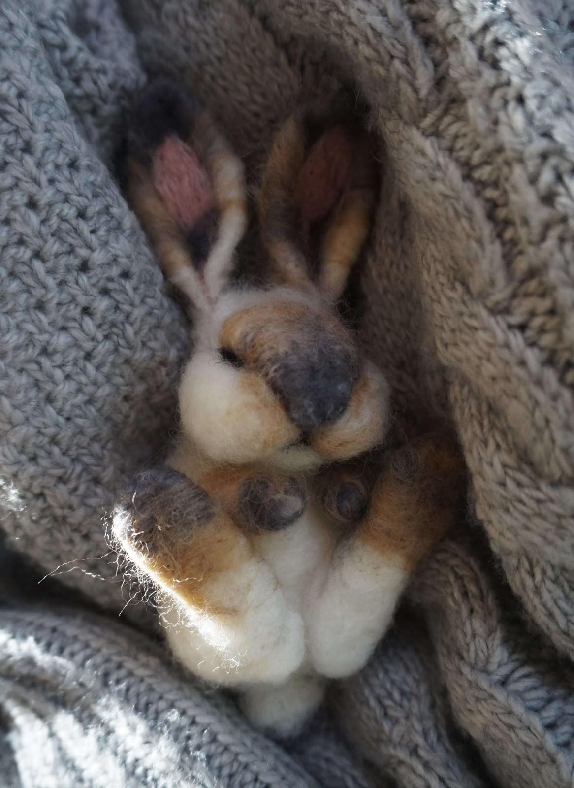 Śpiący króliczek :)