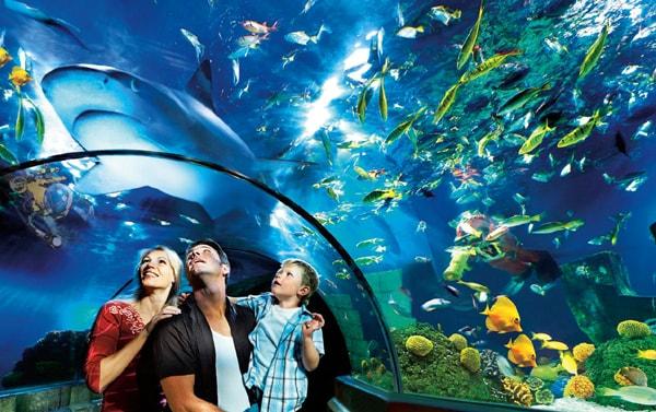 Sealife Legoland Aquarium Malaysia