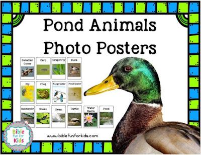 http://www.biblefunforkids.com/2018/07/god-makes-pond-animals-ducks.html