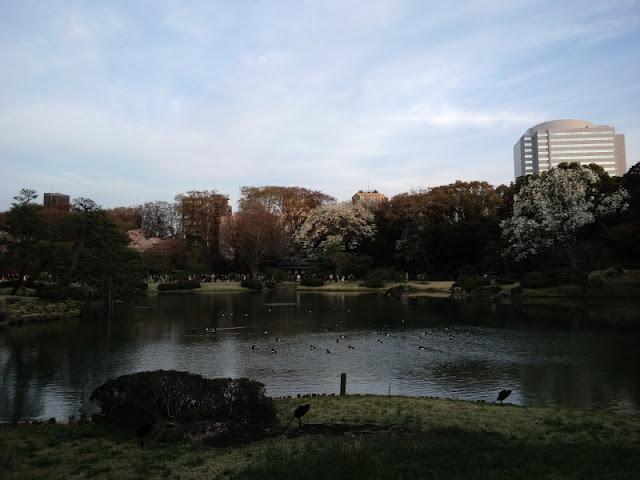 六義園の庭園です。