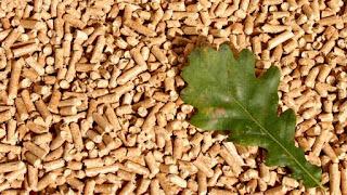 biomasa energia de madera pallet