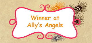 I won at Ally`s Angels!