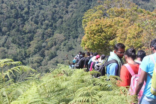 Munnar Kerala Hillstation