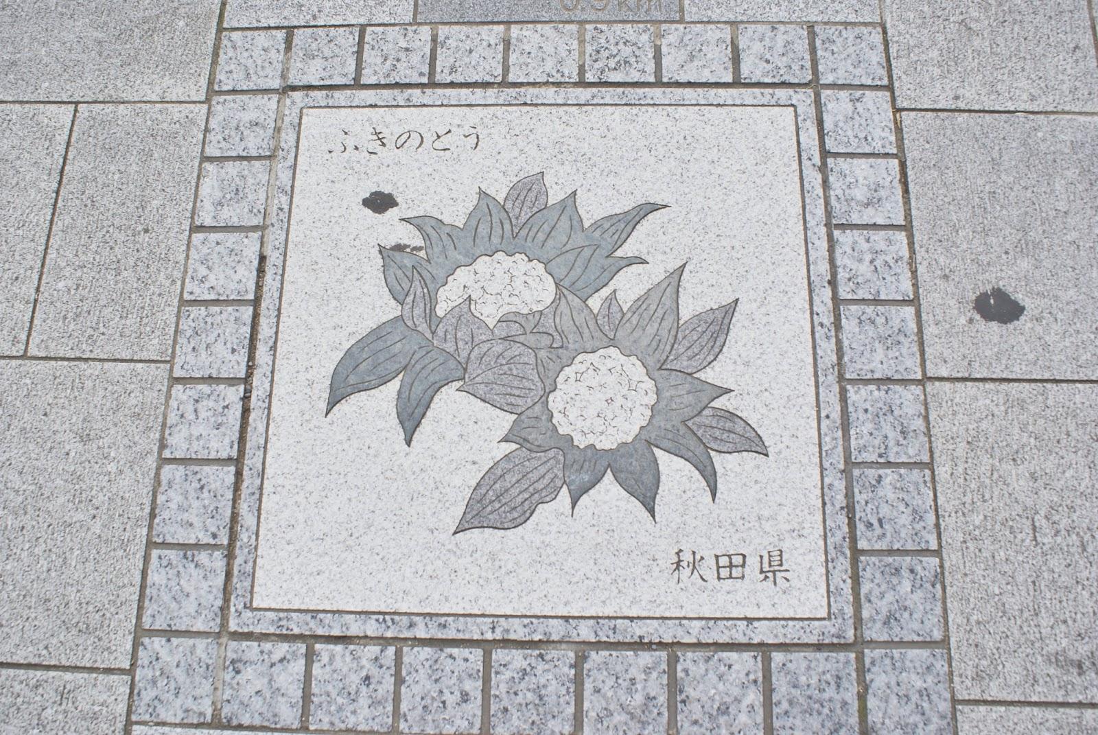 chrysanthemum tokyo marunouchi imperial palace Kōkyo