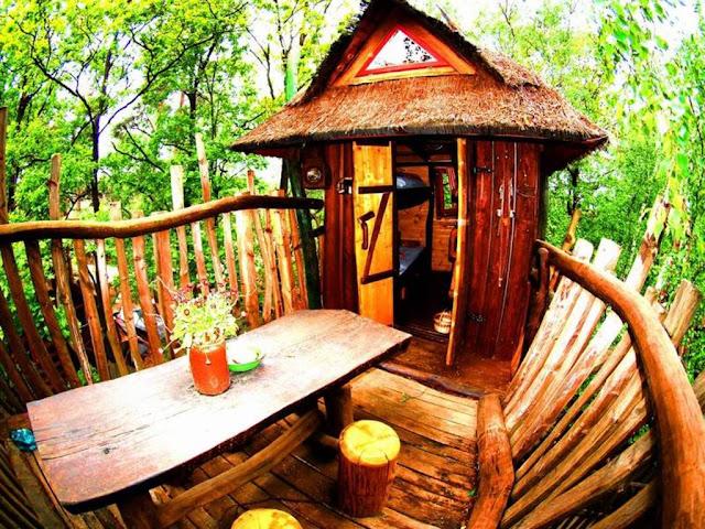 DIY%2BLuxury%2BTree%2BHouses%2B%25282%2529 10 DIY Luxury Tree Houses Interior