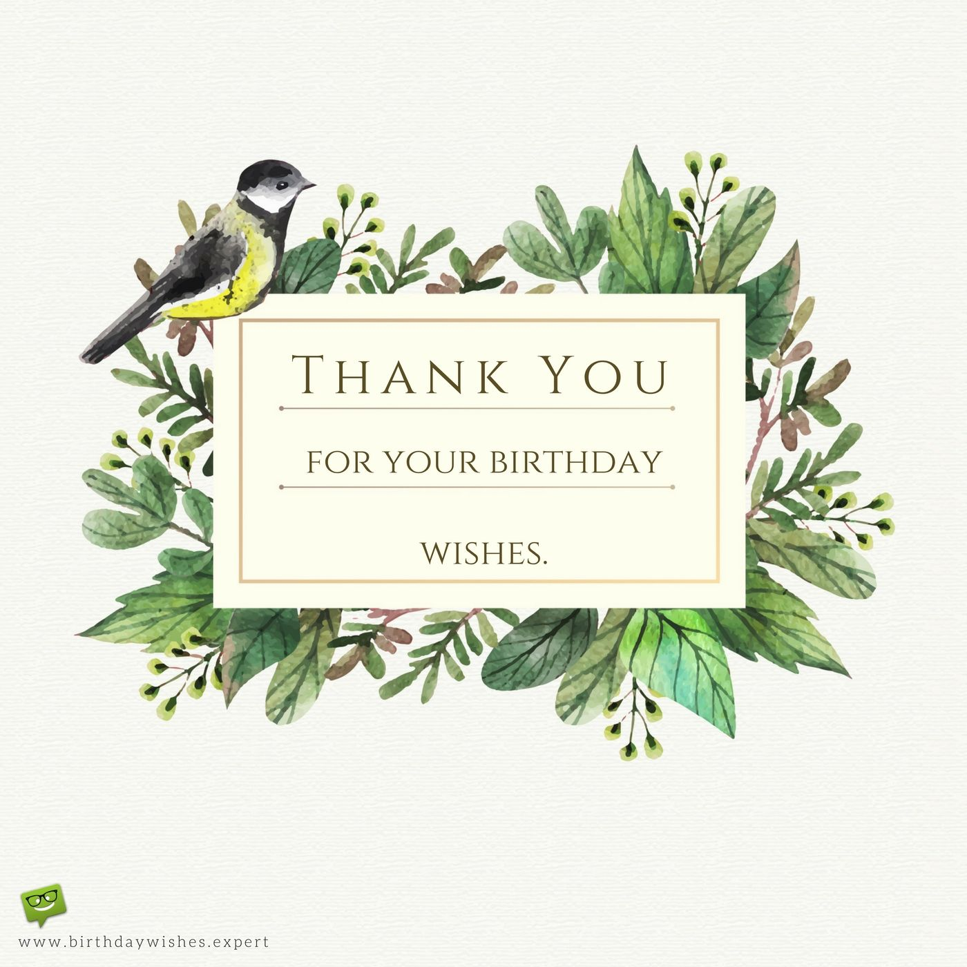 170 Thank You For The Birthday Wishes Cards For Facebook
