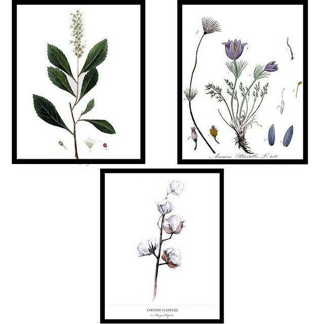 obrazy z motywem roślinnym