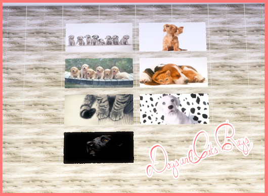 Dogs and Cats Rugs         |          Nathalia Sims