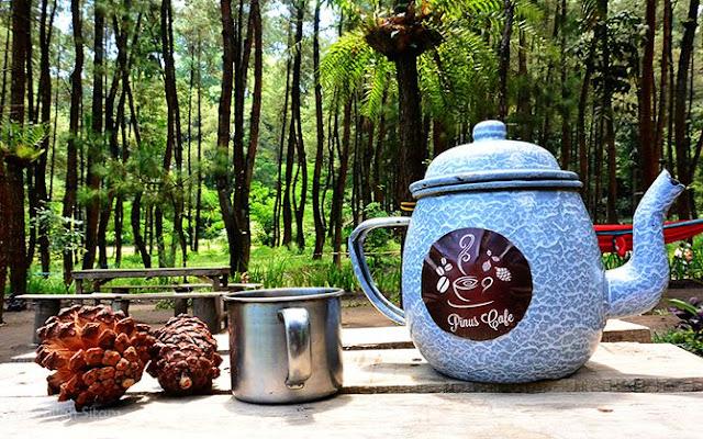 Pinus Cafe, kedai kopi di tengah hutan pinus