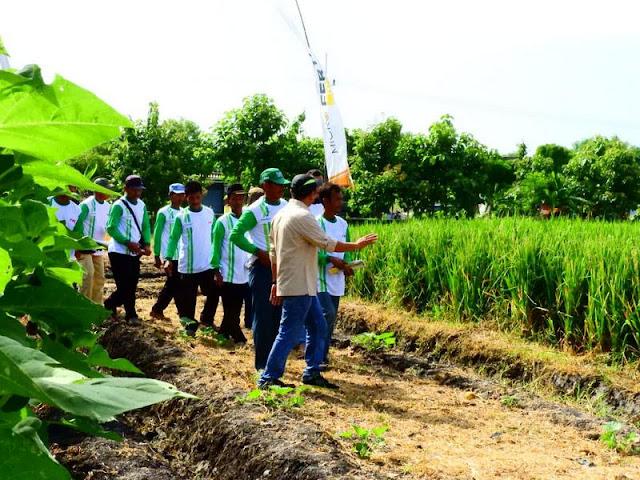 Gandeng PT ASA, Yonarmed 12 Kostrad Beri Penyuluhan Kepada Kelompok Tani di Ngawi