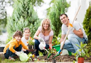 Berkebun dirumah bermanfaat bagi kesehatan