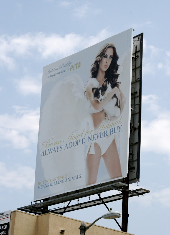 Audrina Patridge PETA adoption angel billboard