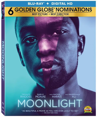 Moonlight 2016 Eng BRRip 480p 300mb ESub