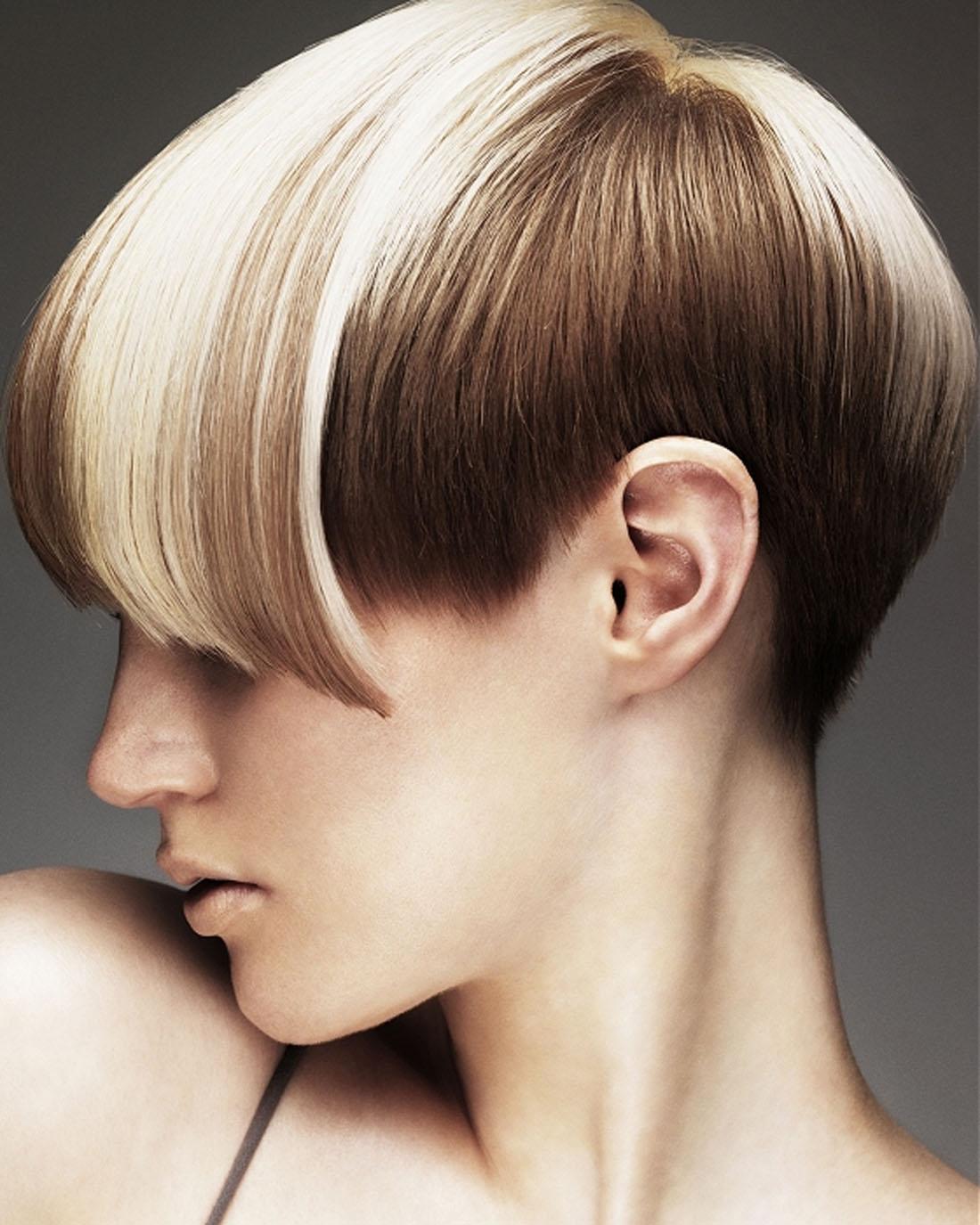 Astonishing Hair Color Short Hairstyles Short Hairstyles For Women And Man Short Hairstyles Gunalazisus