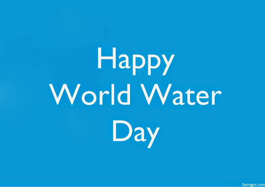 World Water Day Quotes For Increase The Awareness Of People To