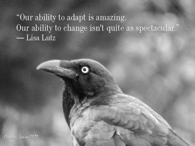 'Our ability to adapt is amazing. Our ability to change isn't quite as spectacular' - Lisa Lutz