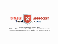 Dampak Mengunakan Anti AdBlock Pada Sebuah Website atau Blog 2018