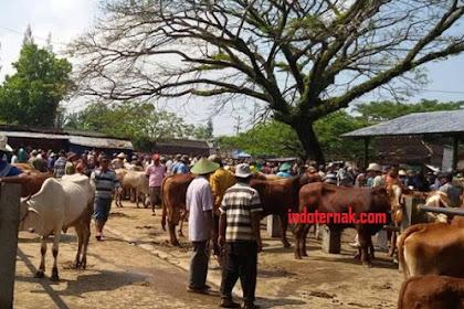 Daftar Pasar Sapi, Hari Pasaran dan Alamat Lokasinya