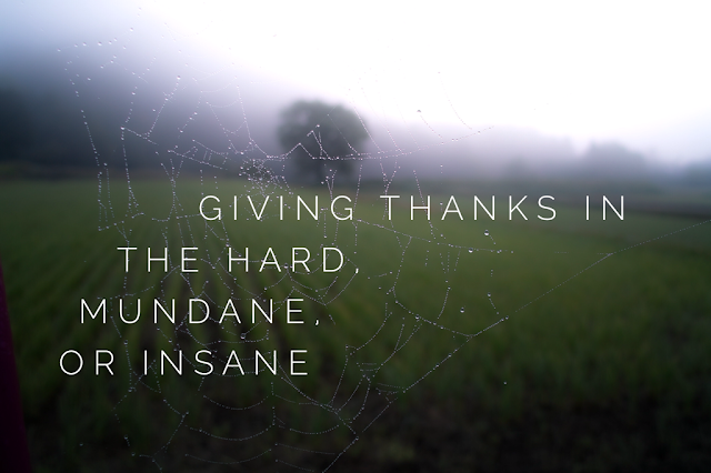 Giving thanks in the hard, mundane, or insane; Powerful Scripture for how to experience thankfulness and receive joy even while suffering hard times.