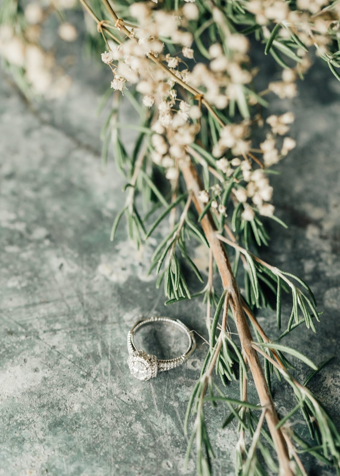 Rustic Engagement Ring-Farm Proposal Photos-Something Minted Photography