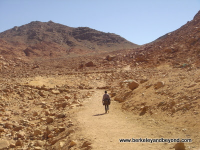 trail up Mt. Sinai, at St. Catherine's Monastery, Egypt