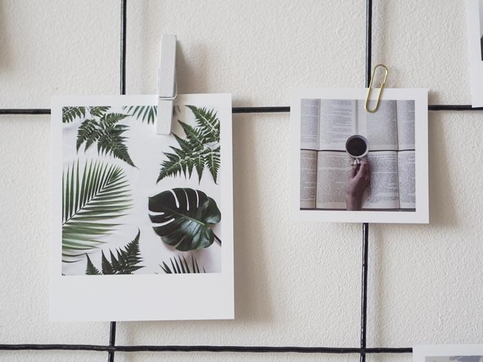 zdjęcia w białych ramkach quickbook