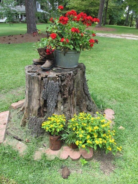 10 ways to spice up your yard with a tree stump   diy