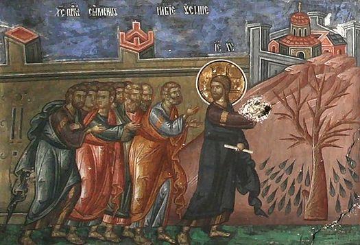 On the Cursing of the Fig Tree (St. John Chrysostom) | MYSTAGOGY RESOURCE  CENTER