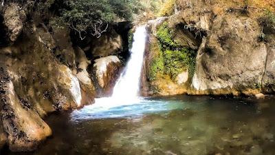 dehradun,shikhar fall,shikhar fall dehradun,shikhar fall location,shikhar fall video,shikhar fall mussoorie,shikhar fall accident,shikhar fall incident,shikhar fall dehradun map,places to visit in dehradun,shikhar falls dehradun,shikhar fall dehradun location,dehradun tourism,waterfalls in dehradun,shikhar fall death,shikhar fall during monsoon is the best place in dehradun,shikhar falls,dehradun video