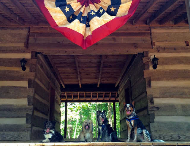 At Red Top Mountain, Rocco and his pals look forward to National Trails Day and Georgia State Parks Tails on Trails