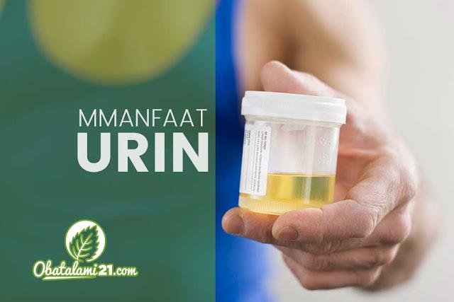 Manfaat urin untuk menghilangkan jerawat