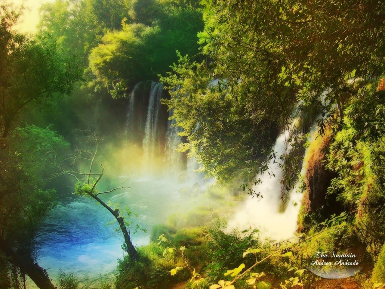 amazon nature wallpaper - photo #8