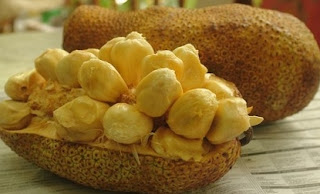 Siapa yg tidak kenal dgn buah manis yg satu ini 12 Manfaat Buah Cempedak untuk Kesehatan