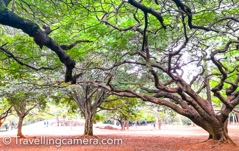 Many times I reach places which I never planned to visit. Cubbon Park is one of such place which came my way when I was walking around Vidhan Soudha in Banglore. I consider walking at one of the best ways to explore place, because of various reasons. You easily get familiar with neighbourhood and get better understanding of the directions.