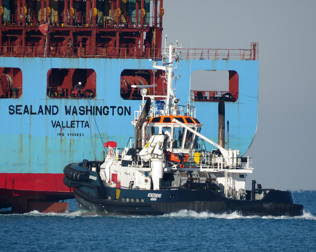 The tug Montenero (IMO 9779264) and the container ship Sealand Washington (IMO 9196852), Livorno