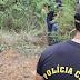 Investigadora é sequestrada e executada por bandidos