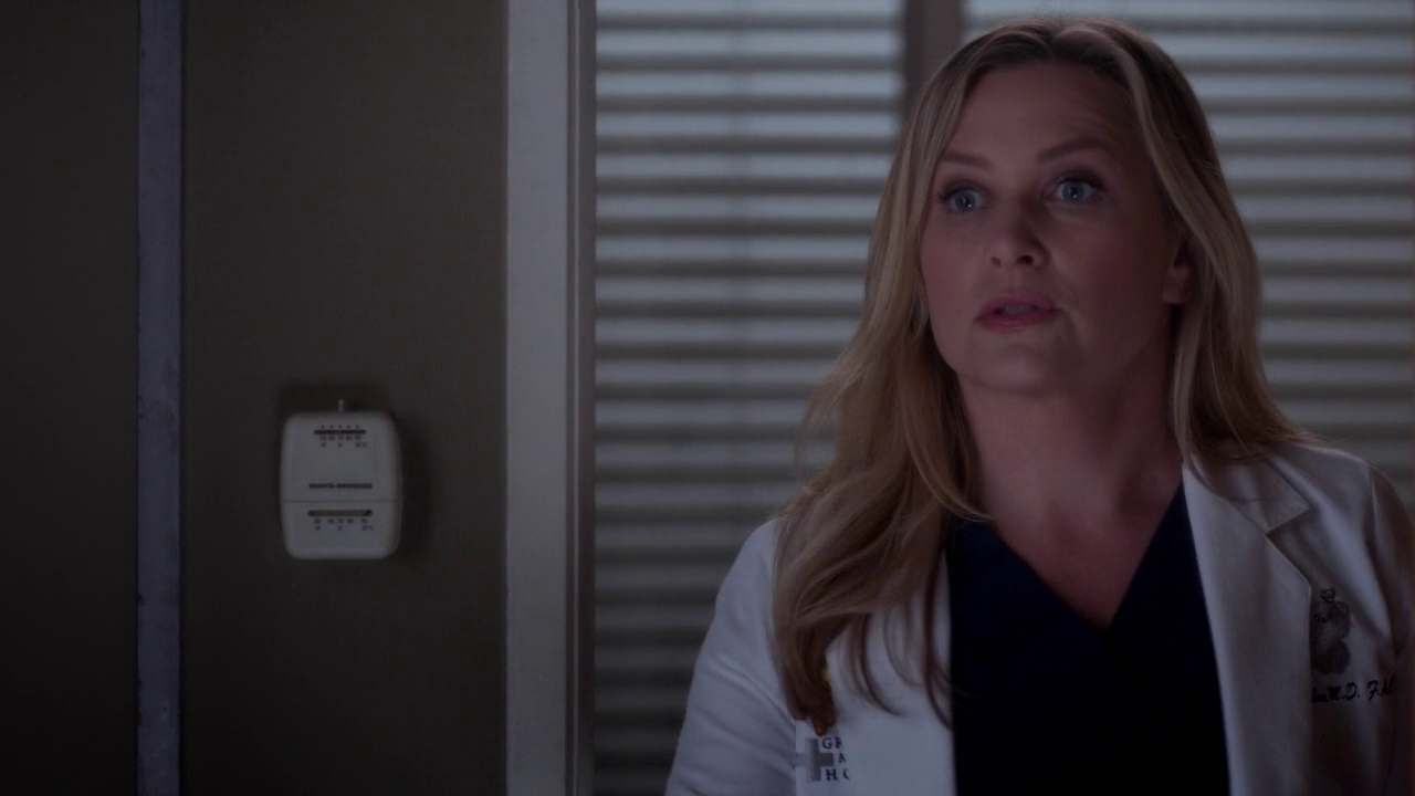 Grey's Anatomy 11x08