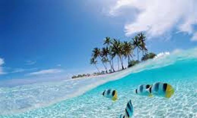 Wisata Laut Bunaken Tempat Wisata Terpopuler dan Terbaik Di Indonesia