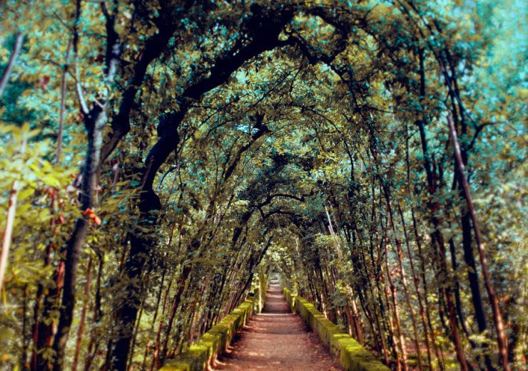 20. The Boboli Gardens, Florence, Italy - 29 Wonderful Paths
