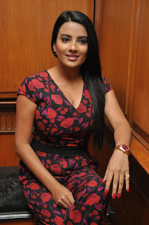 Actress Jyoti Seth Pictures in Floral Dress at Bhadram Be Careful Brother Music Launch  0033.jpg