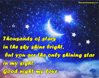 Thousands of stars in the sky shine bright,  but you are the only shining star in my sight. Good night my love