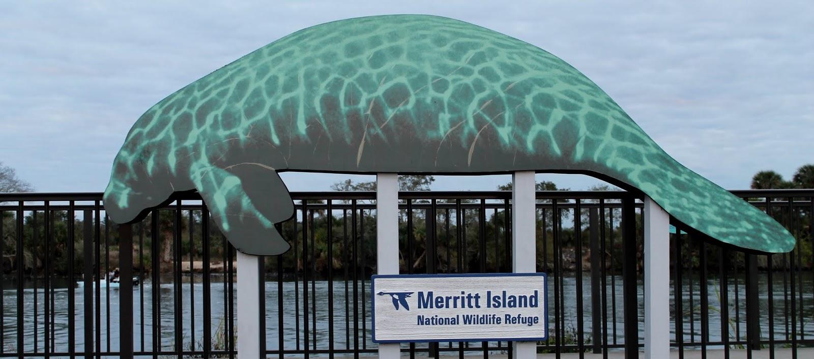 Mirador para ver los manatíes en el Haulover Canal. Merritt Island National Wildlife Refuge