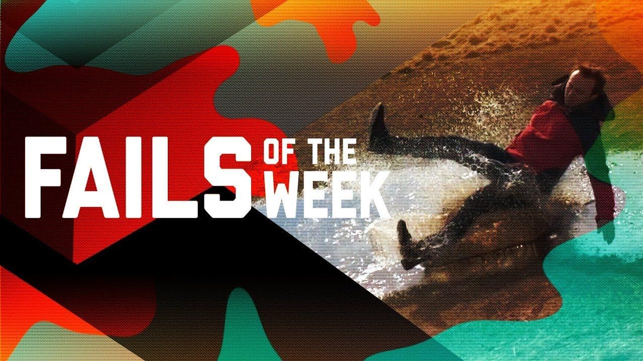 The Worst Fails of the Week : 2018年11月第4週の思わず、あ痛ッ ! ! と言ってしまうサイテーの失敗の痛いビデオをまとめた総集編 ! !