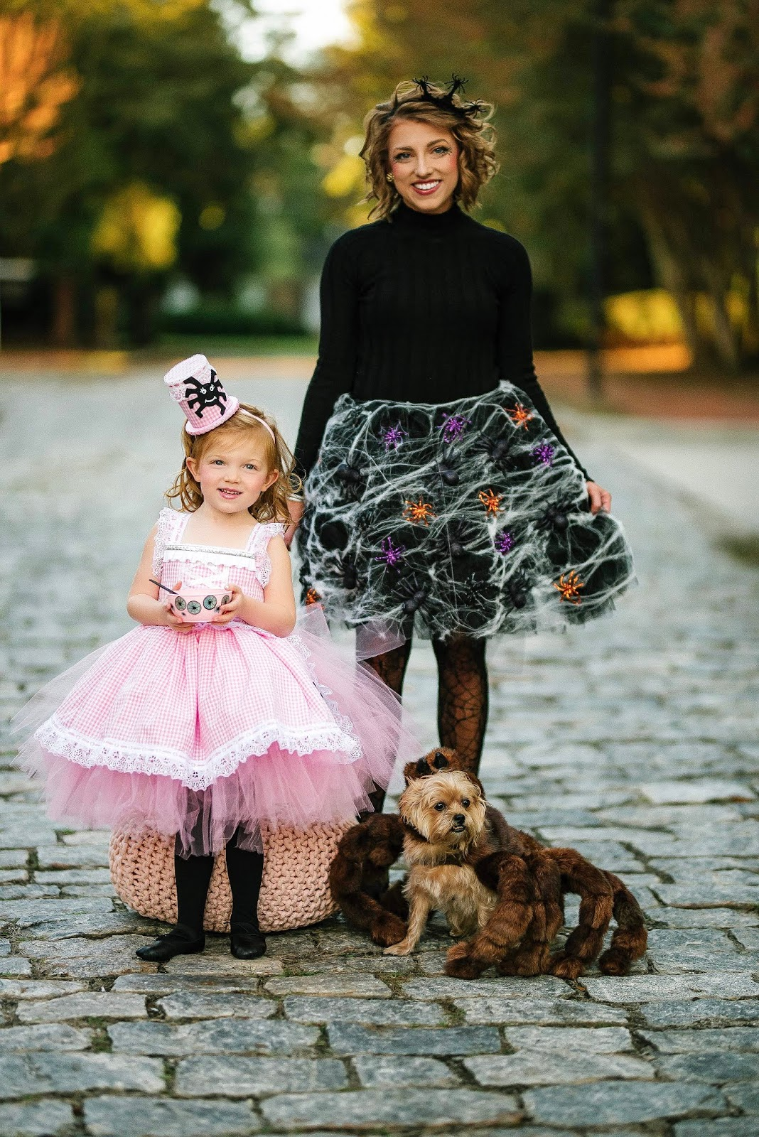 Family Halloween Costume Ideas: A Little Miss Muffet Halloween - Something Delightful Blog