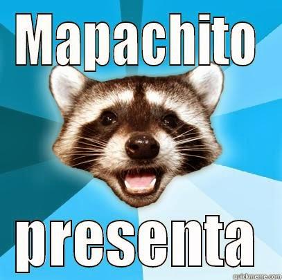 meme-mapache