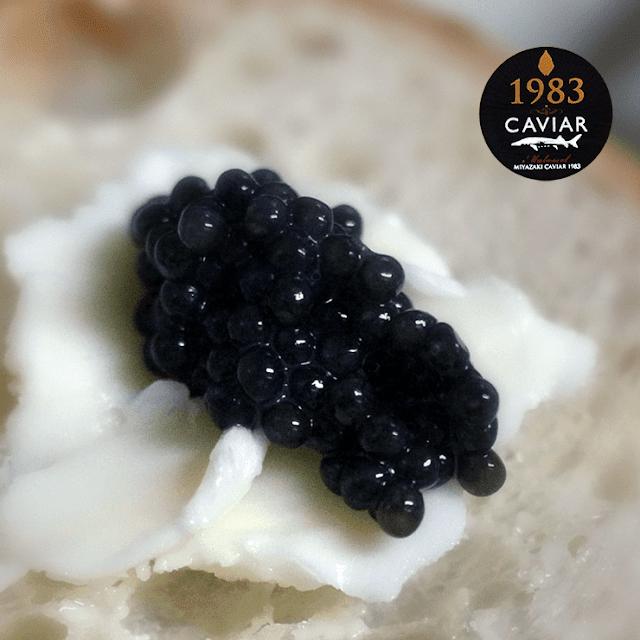 『宮崎キャビア』と『カスピ海産 天然ベルーガ』を食べ比べ!国産キャビアの実力は?