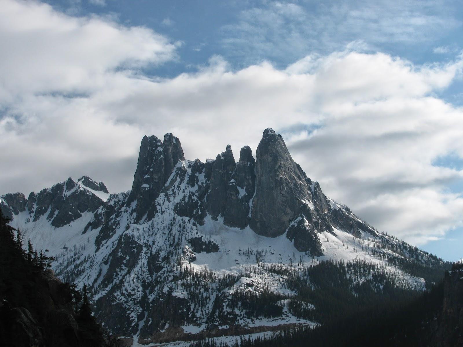 American Alpine Institute