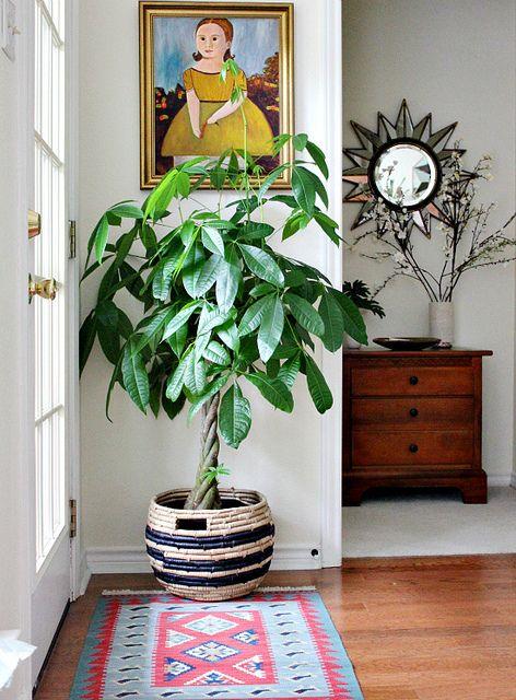 30 imgenes de inspiracin para decorar con macetas Plantas