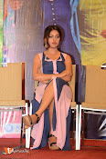 Majnu Audio Successmeet-thumbnail-3